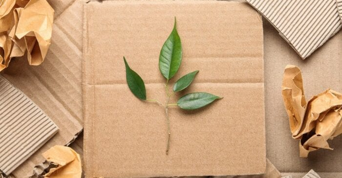 Visual representation of sustainable packaging